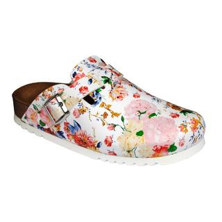 Astilbe viacfarebná domáca obuv